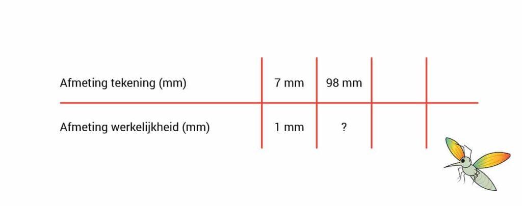 schaal berekenen tabel