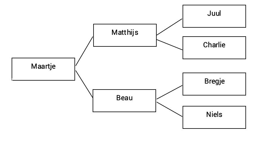 Wat is een boomdiagram