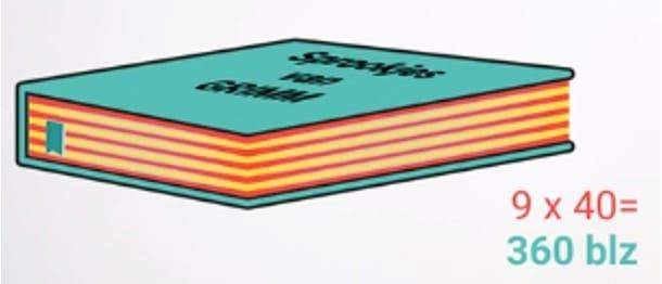Totaal aantal bladzijdes boek