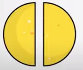 breuk voorbeeld halve eierkoek